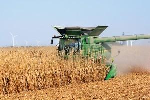 Gov. Mike Pence harvests