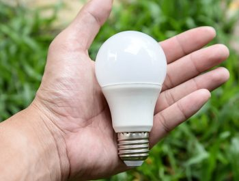 LED bulb in person's hand