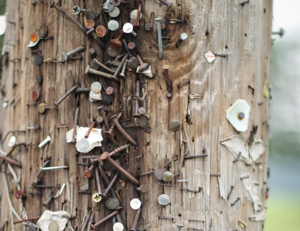 Utility pole with nails etc