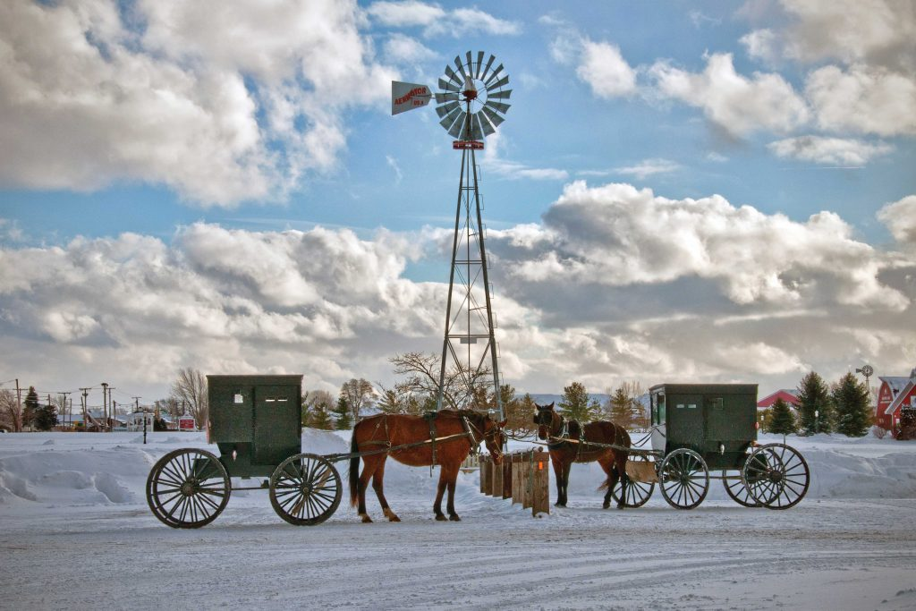 Amish buggies in winter at Yoder's store in Shipshewana, Indiana on cloudy day in front of windmill