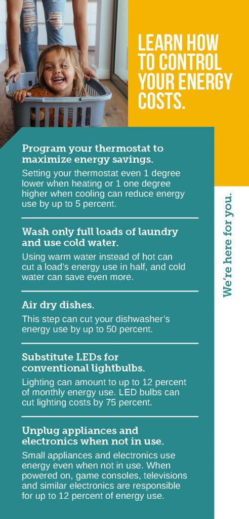 Infographic for controlling your energy costs