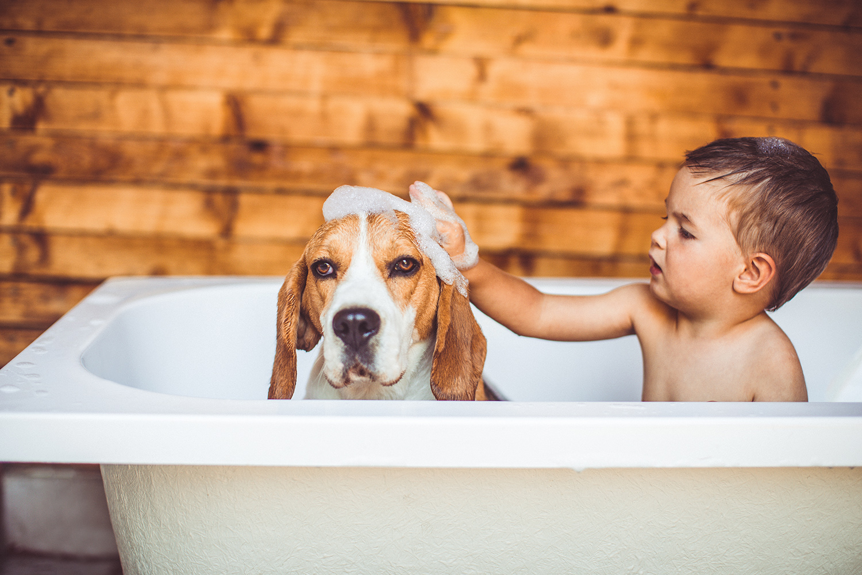 Boy in tub with dog