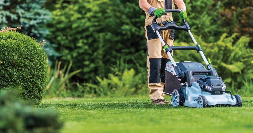 Person cutting grass