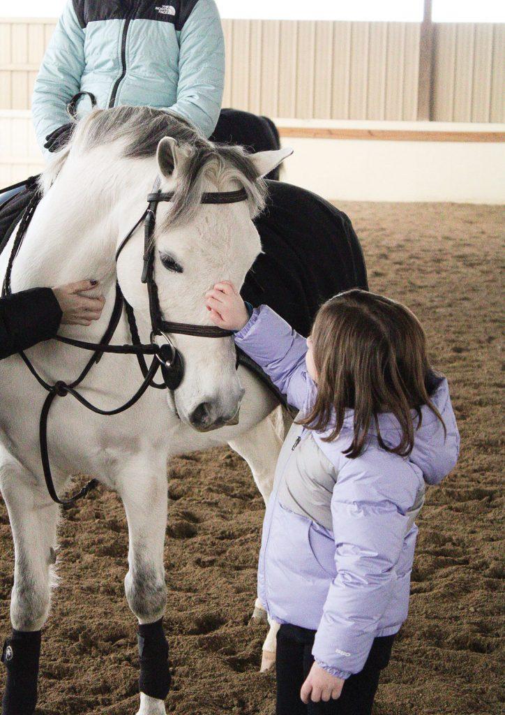 Girl petting horse at Three Ships LLC